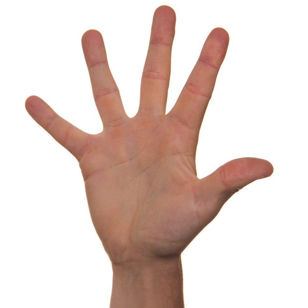 volunteer-422598_1920 (one hand)